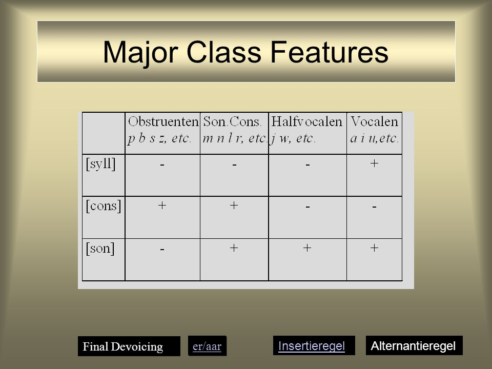 Major Class Features Final Devoicing er/aar Insertieregel
