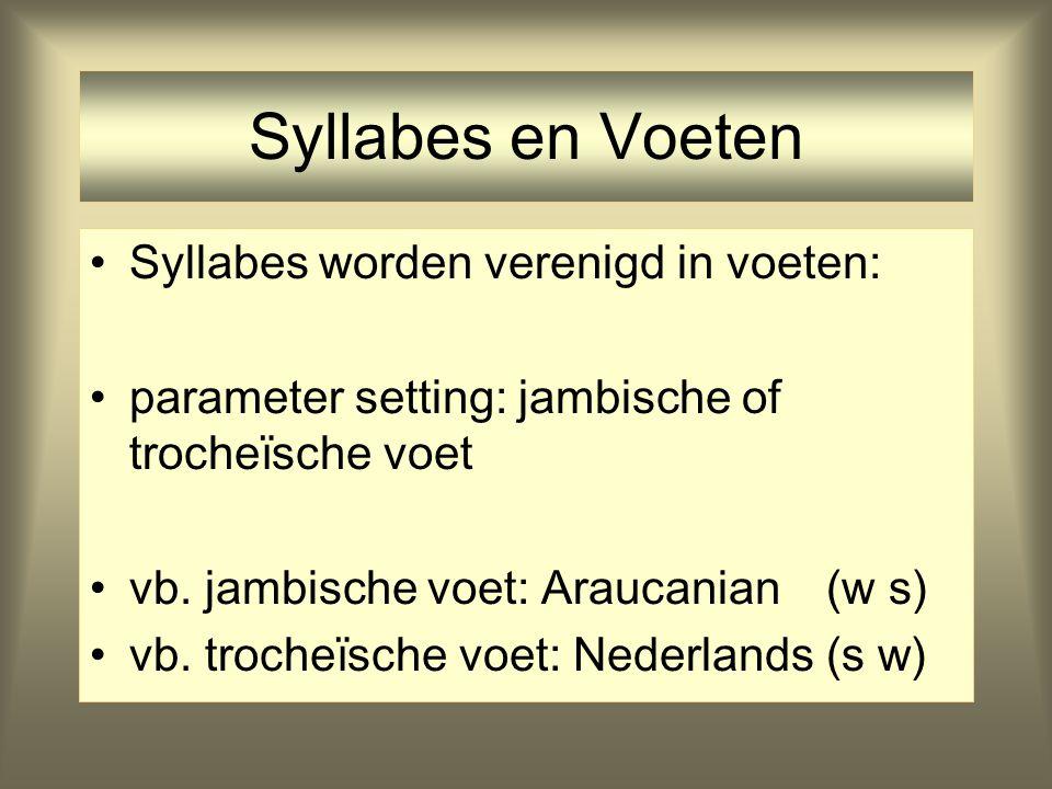 Syllabes en Voeten Syllabes worden verenigd in voeten: