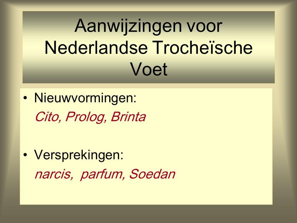 Aanwijzingen voor Nederlandse Trocheïsche Voet