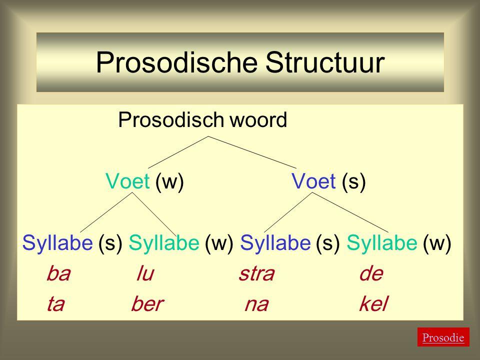 Prosodische Structuur