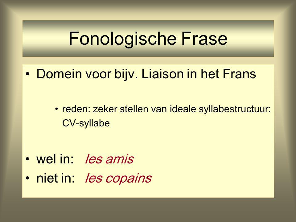 Fonologische Frase Domein voor bijv. Liaison in het Frans