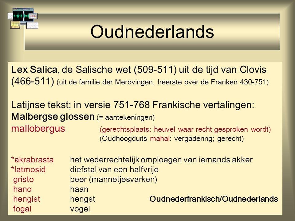 Oudnederlands Lex Salica, de Salische wet (509-511) uit de tijd van Clovis (466-511) (uit de familie der Merovingen; heerste over de Franken 430-751)