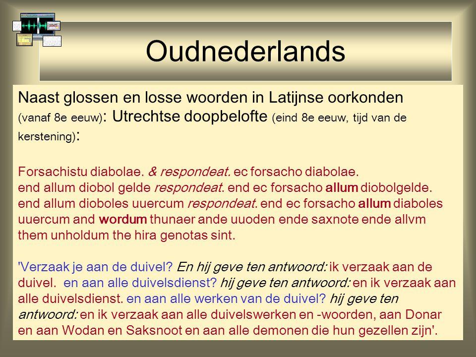 Oudnederlands Naast glossen en losse woorden in Latijnse oorkonden
