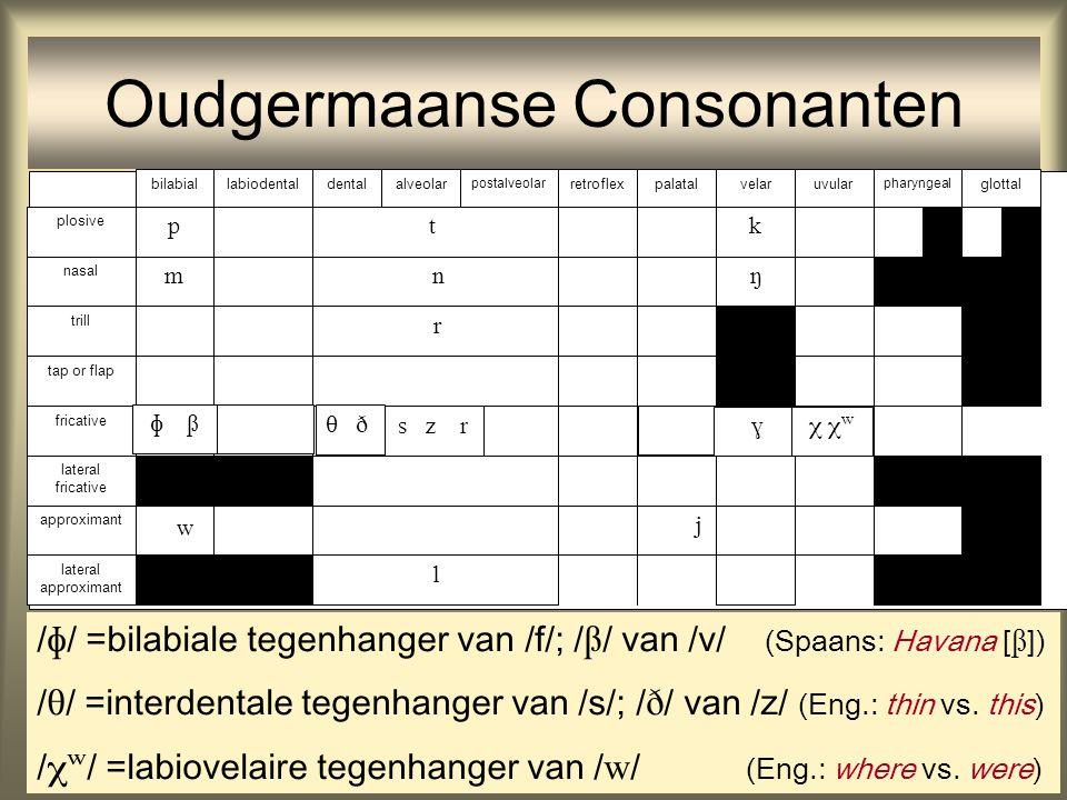 Oudgermaanse Consonanten