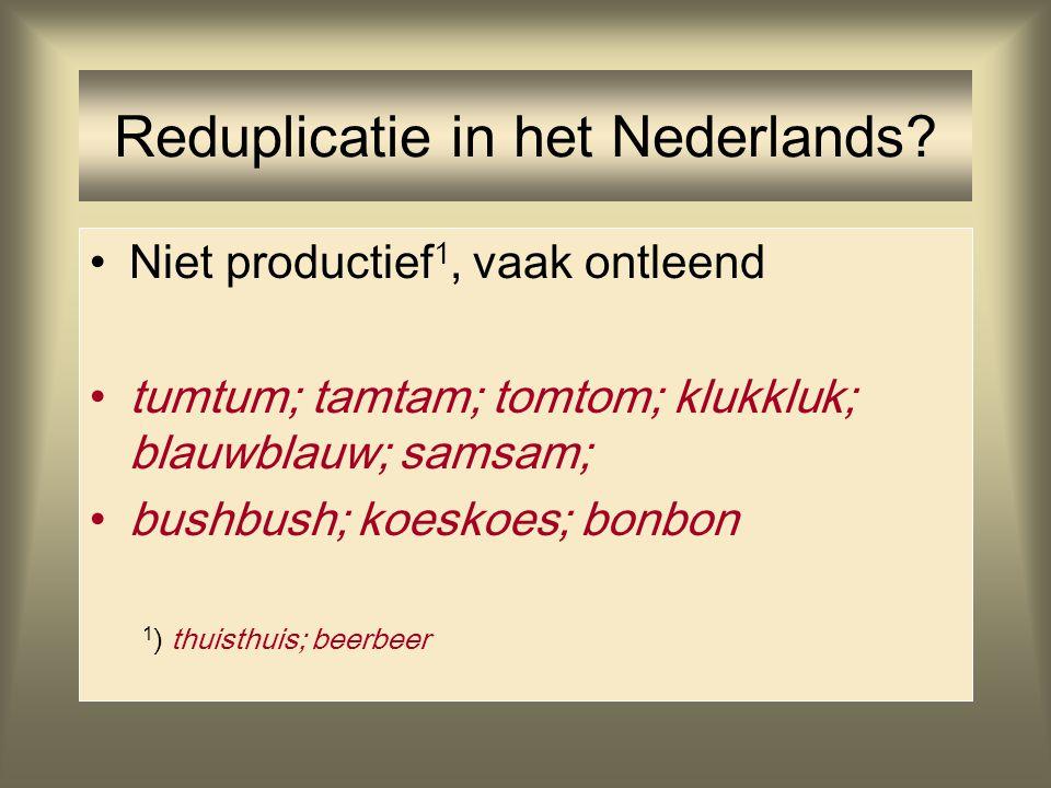 Reduplicatie in het Nederlands