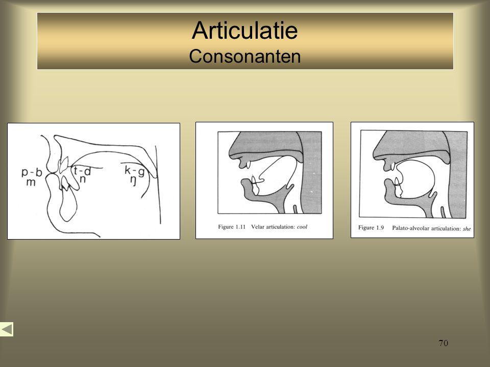 Articulatie Consonanten