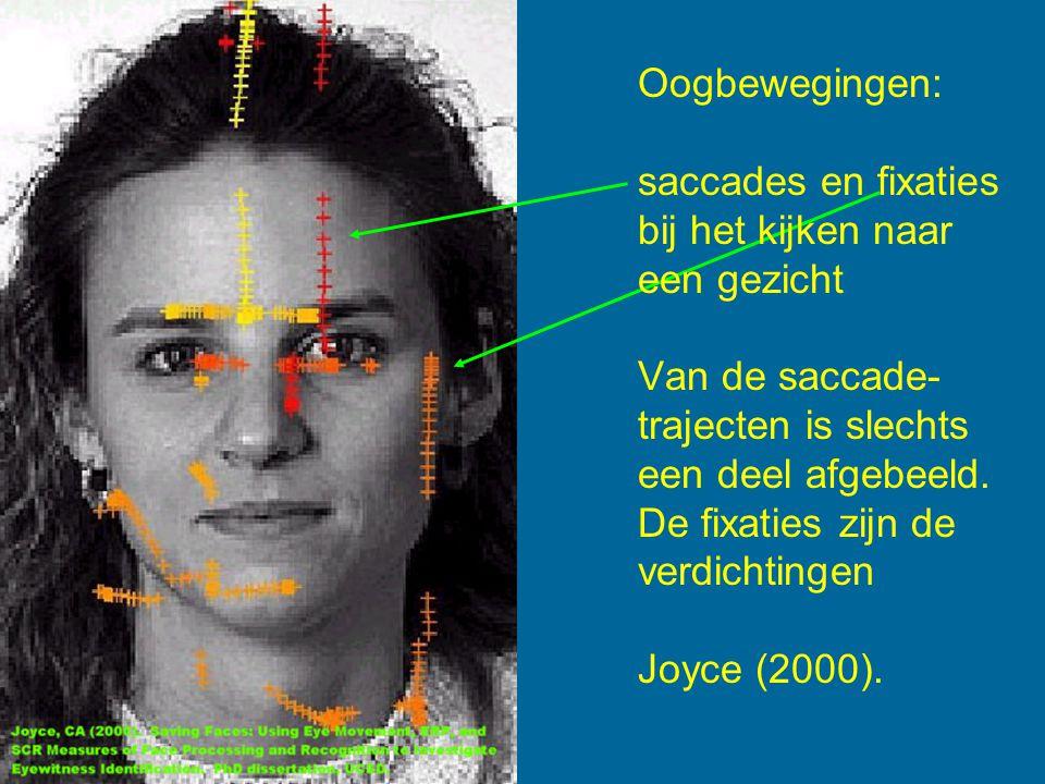 Oogbewegingen: saccades en fixaties bij het kijken naar een gezicht Van de saccade- trajecten is slechts een deel afgebeeld.