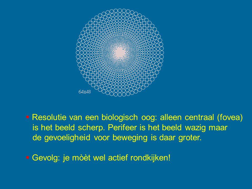 Resolutie van een biologisch oog: alleen centraal (fovea)