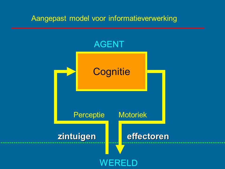 Aangepast model voor informatieverwerking