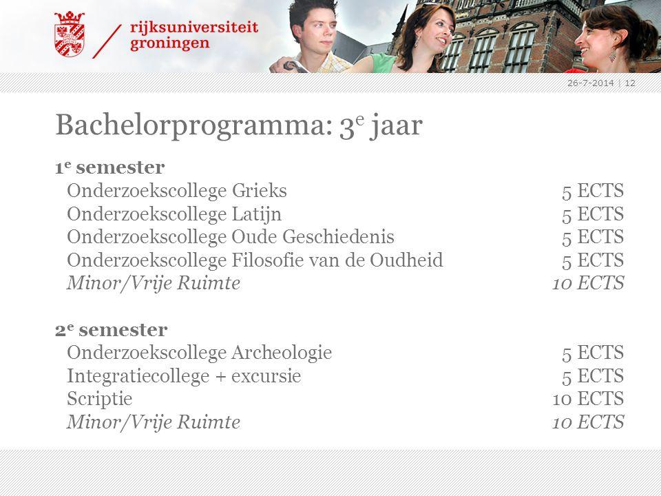 Bachelorprogramma: 3e jaar