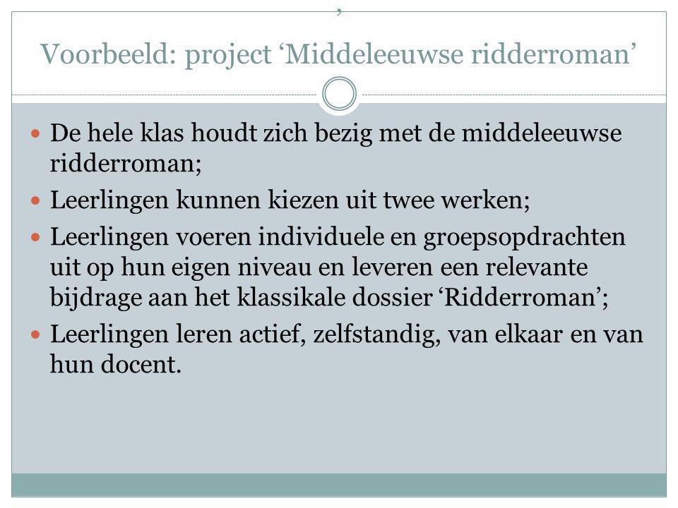 ' Voorbeeld: project 'Middeleeuwse ridderroman'