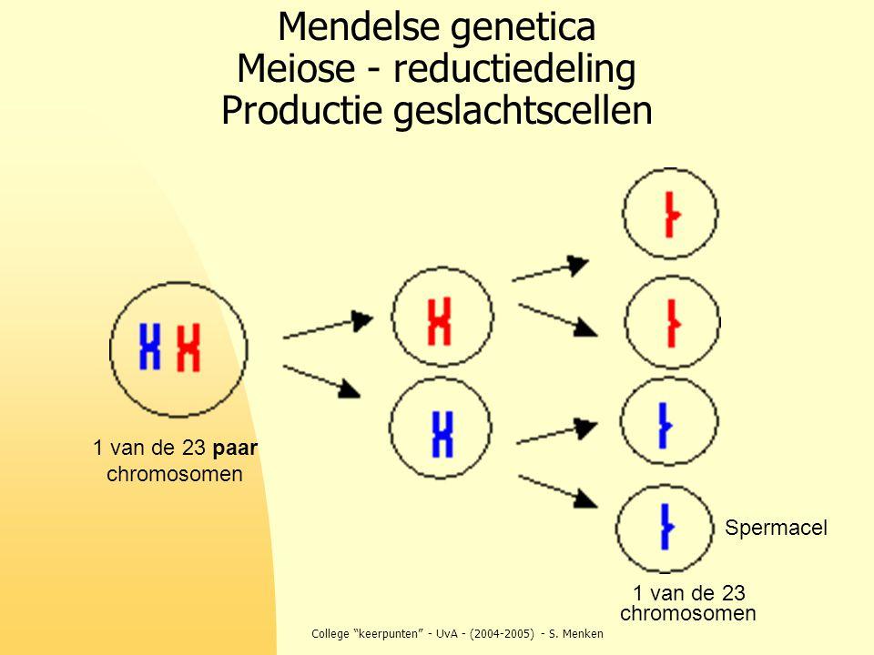 Mendelse genetica Meiose - reductiedeling Productie geslachtscellen