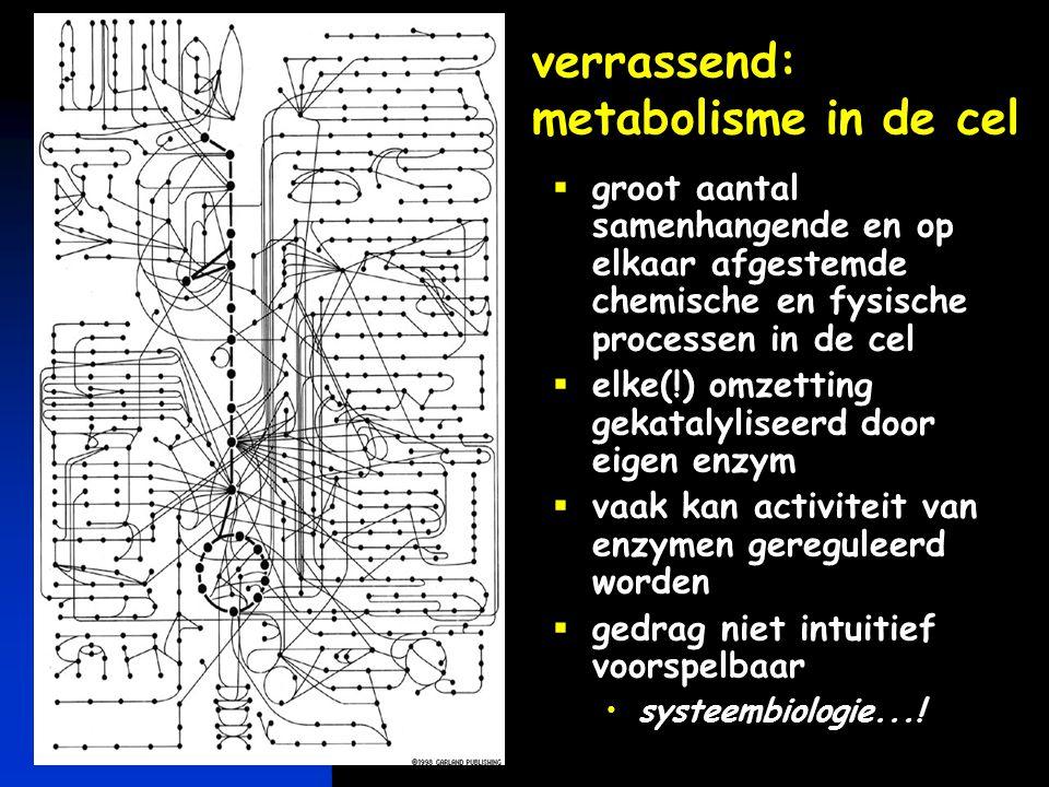 verrassend: metabolisme in de cel