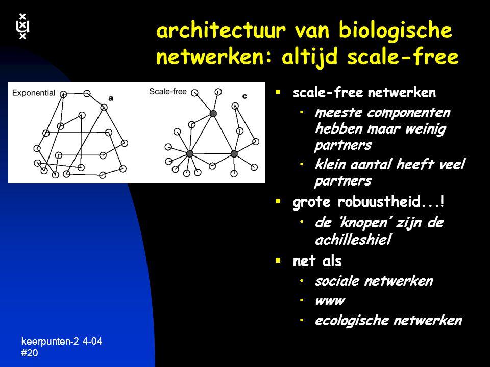 architectuur van biologische netwerken: altijd scale-free
