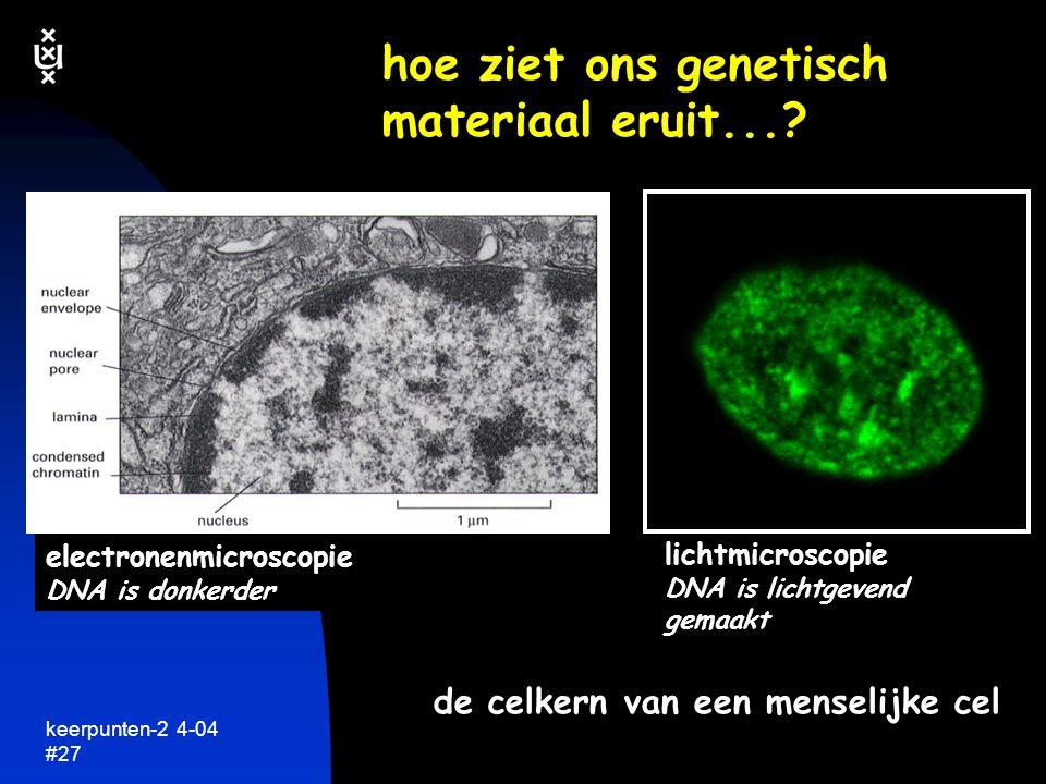 hoe ziet ons genetisch materiaal eruit...