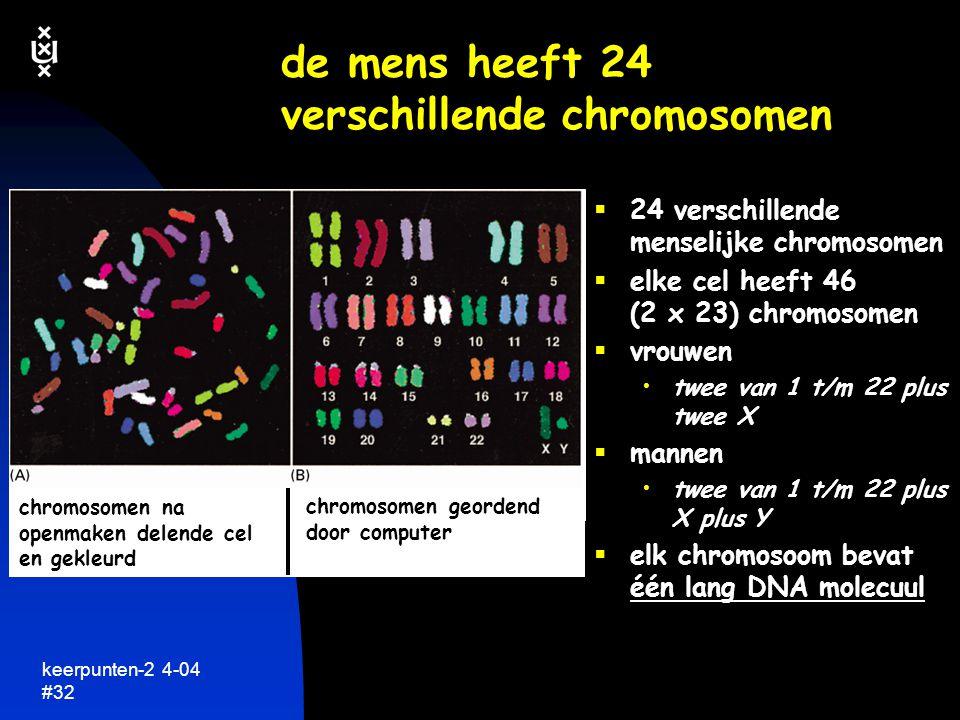 de mens heeft 24 verschillende chromosomen