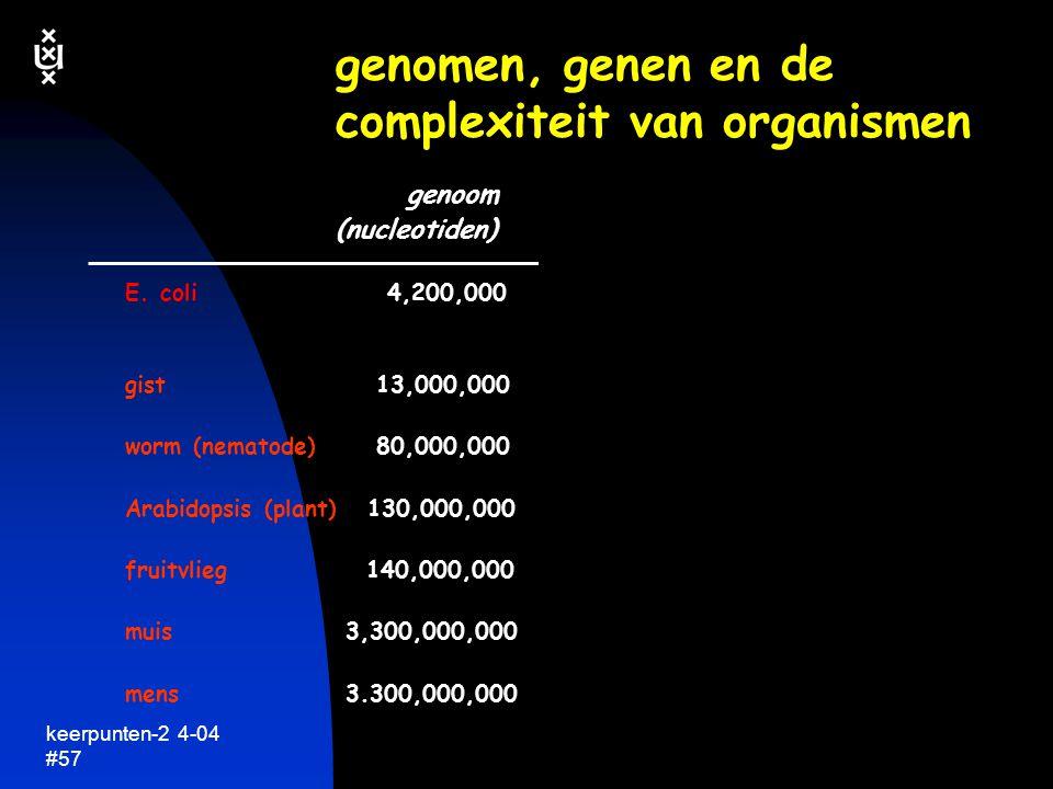 genomen, genen en de complexiteit van organismen