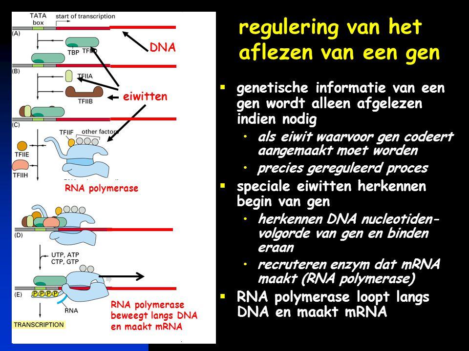 regulering van het aflezen van een gen