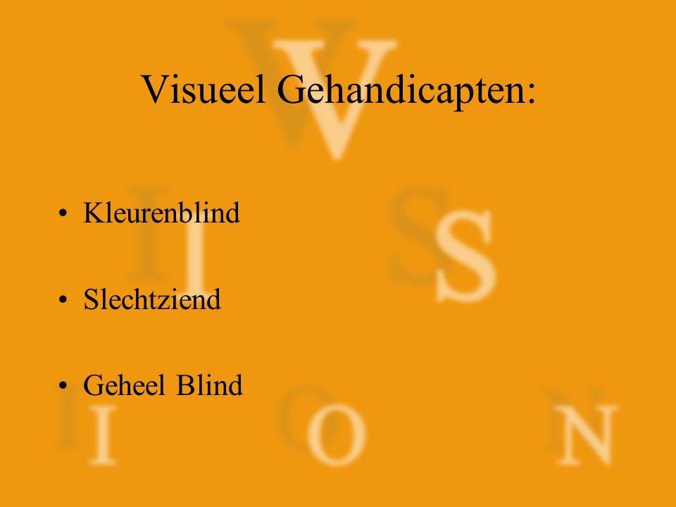 Visueel Gehandicapten: