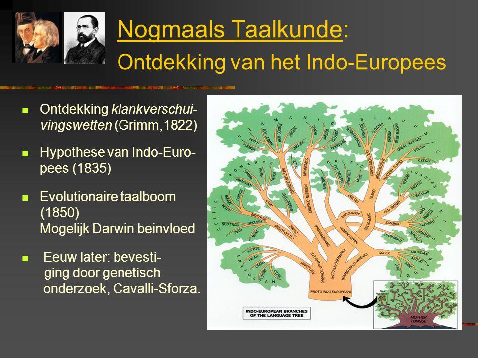Nogmaals Taalkunde: Ontdekking van het Indo-Europees