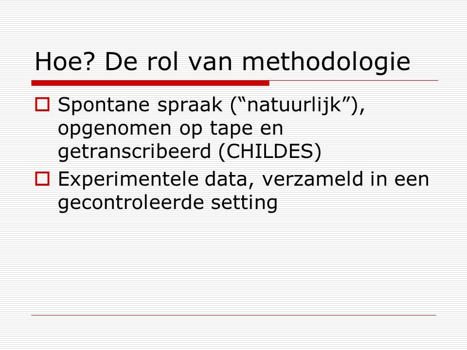 Hoe De rol van methodologie
