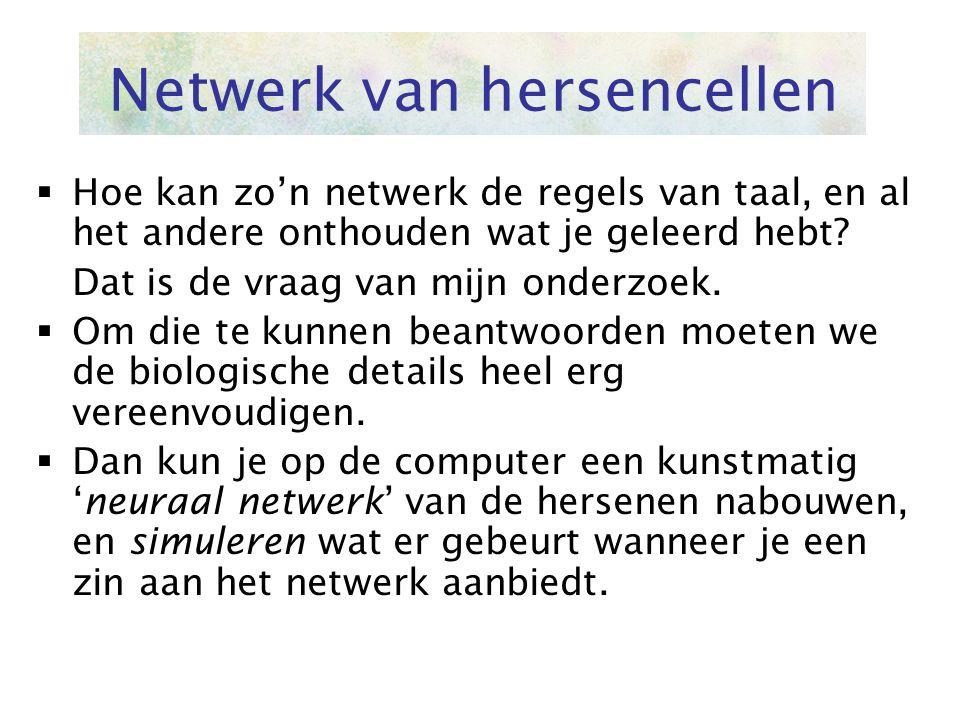 Netwerk van hersencellen