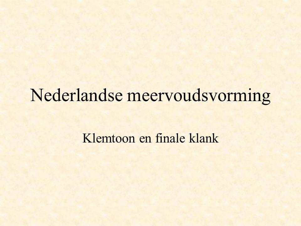 Nederlandse meervoudsvorming