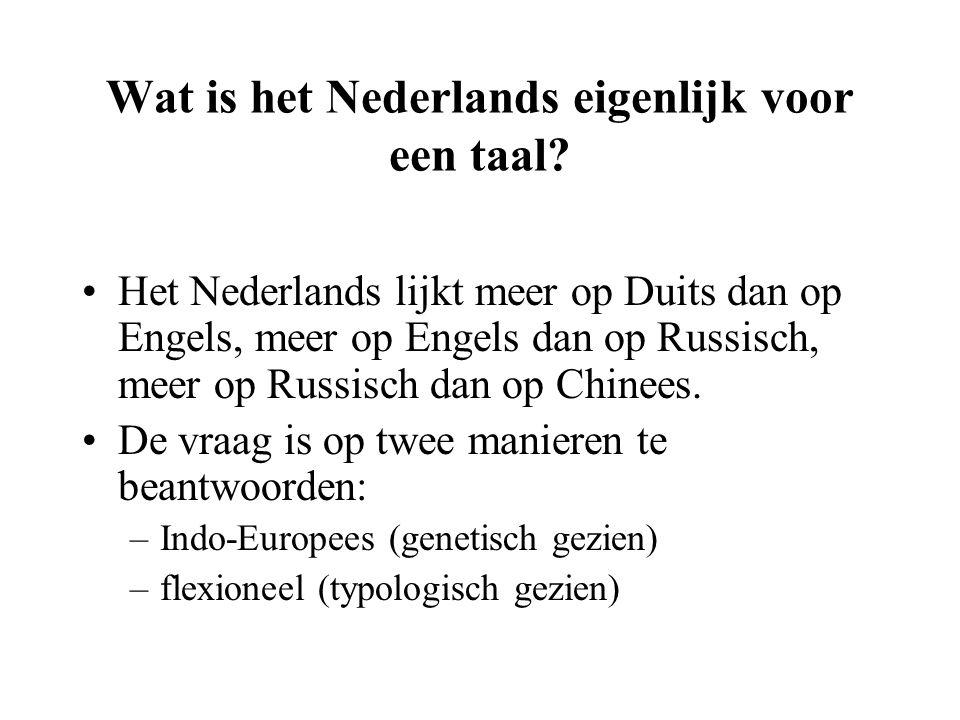 Wat is het Nederlands eigenlijk voor een taal