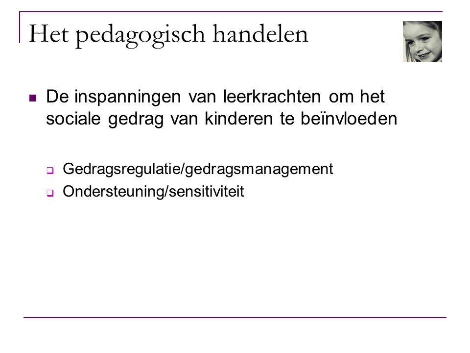 Het pedagogisch handelen