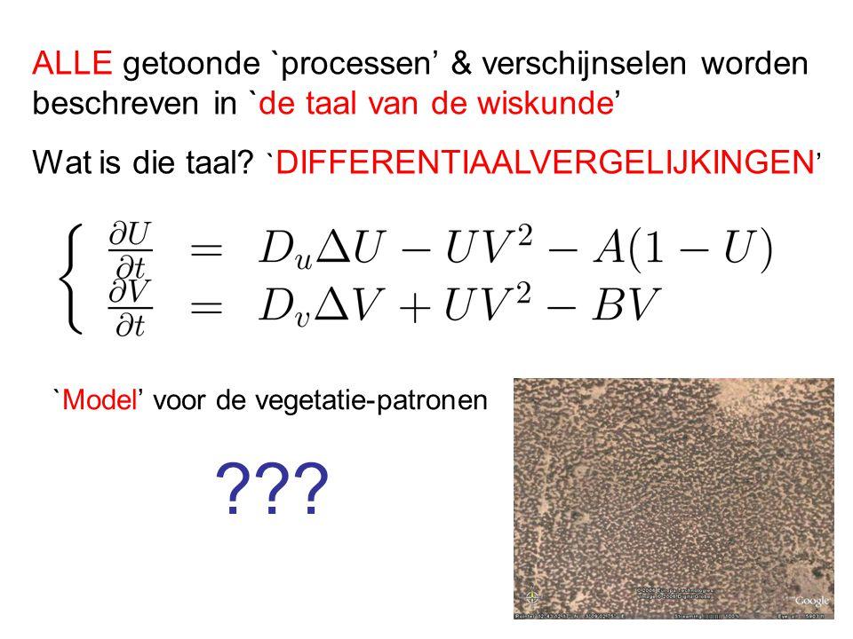 ALLE getoonde `processen' & verschijnselen worden beschreven in `de taal van de wiskunde'