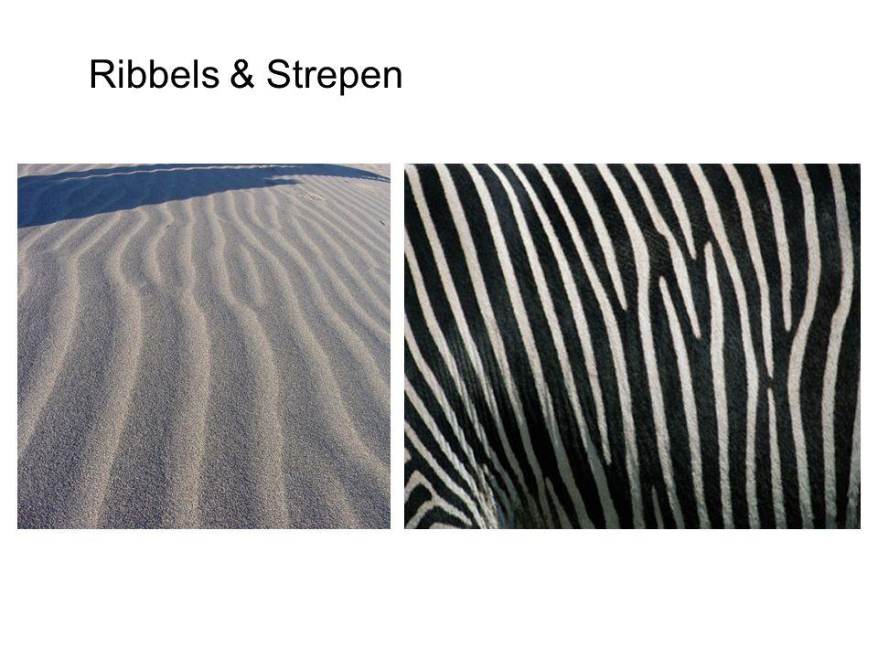 Ribbels & Strepen