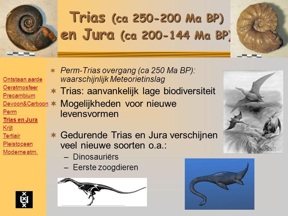 Trias (ca 250-200 Ma BP) en Jura (ca 200-144 Ma BP)