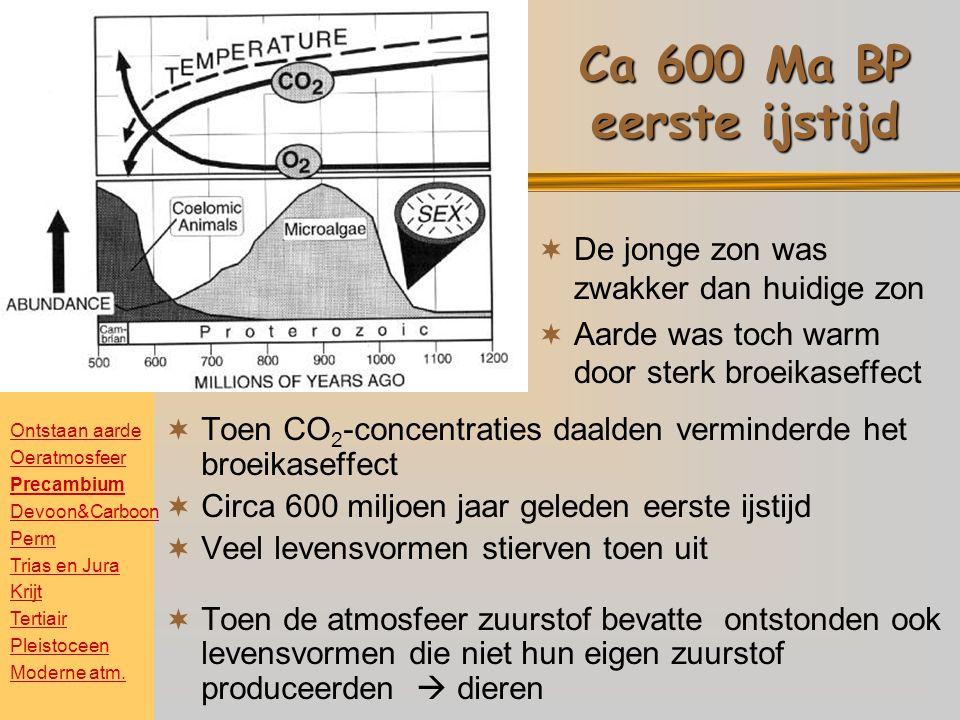 Ca 600 Ma BP eerste ijstijd De jonge zon was zwakker dan huidige zon