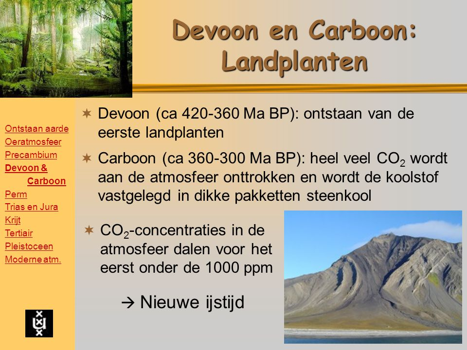 Devoon en Carboon: Landplanten