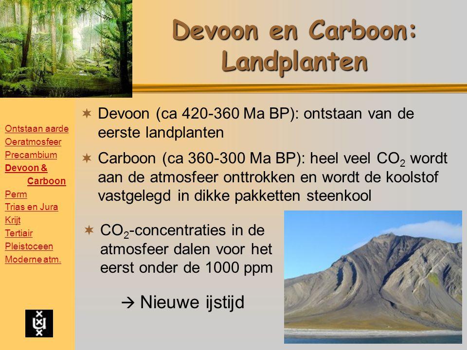 Devoon en Carboon: Landplanten
