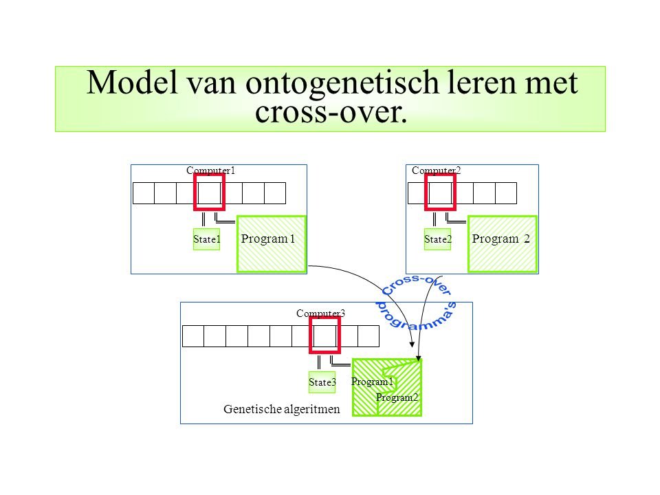 Model van ontogenetisch leren met cross-over.
