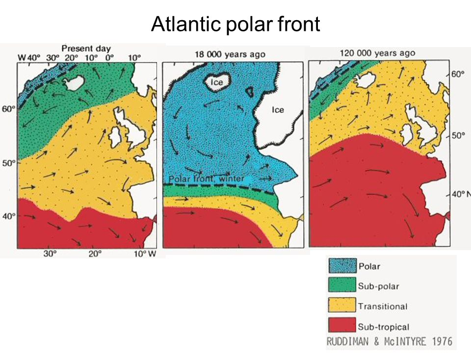 Atlantic polar front