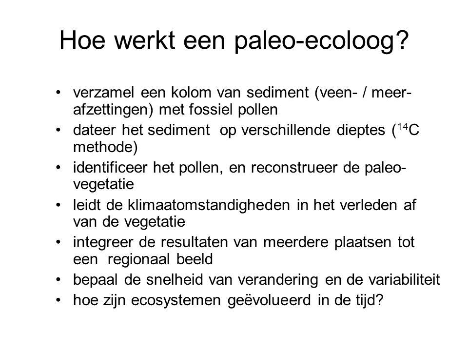 Hoe werkt een paleo-ecoloog