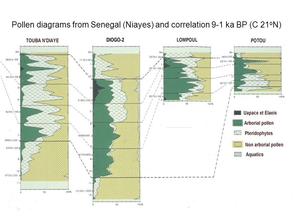 Pollen diagrams from Senegal (Niayes) and correlation 9-1 ka BP (C 21oN)
