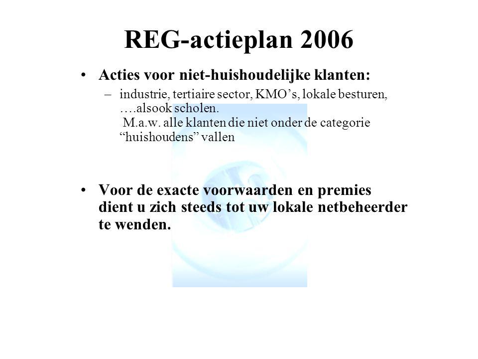 REG-actieplan 2006 Acties voor niet-huishoudelijke klanten: