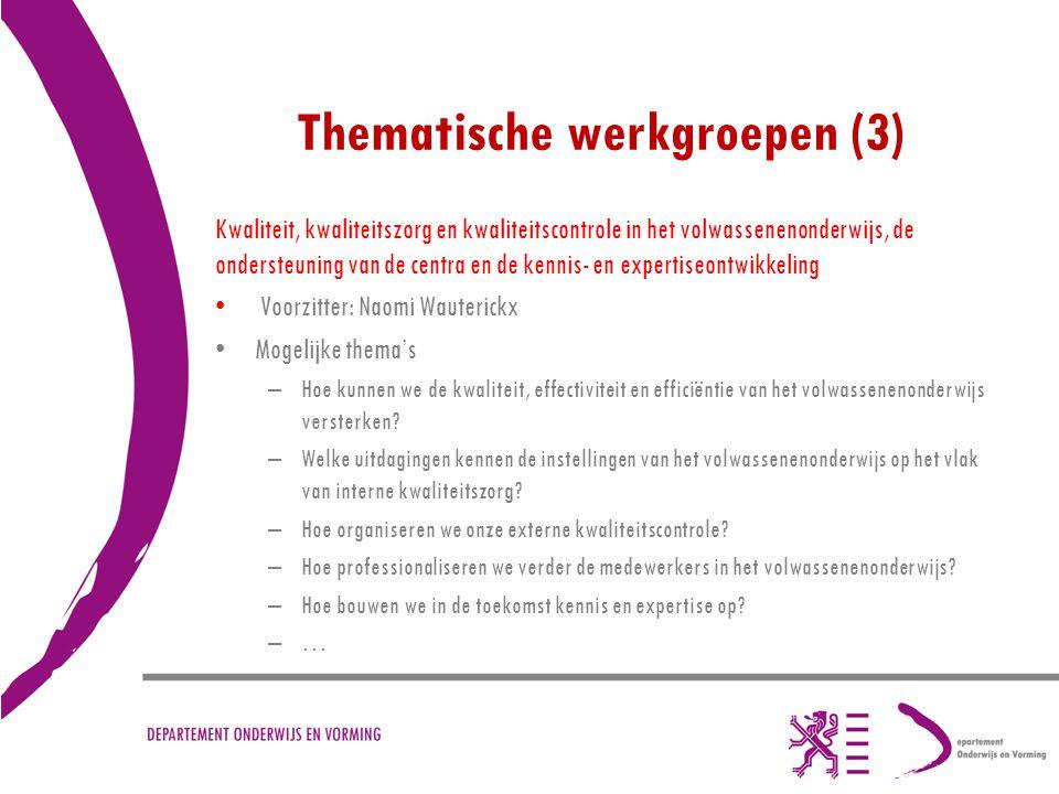 Thematische werkgroepen (3)