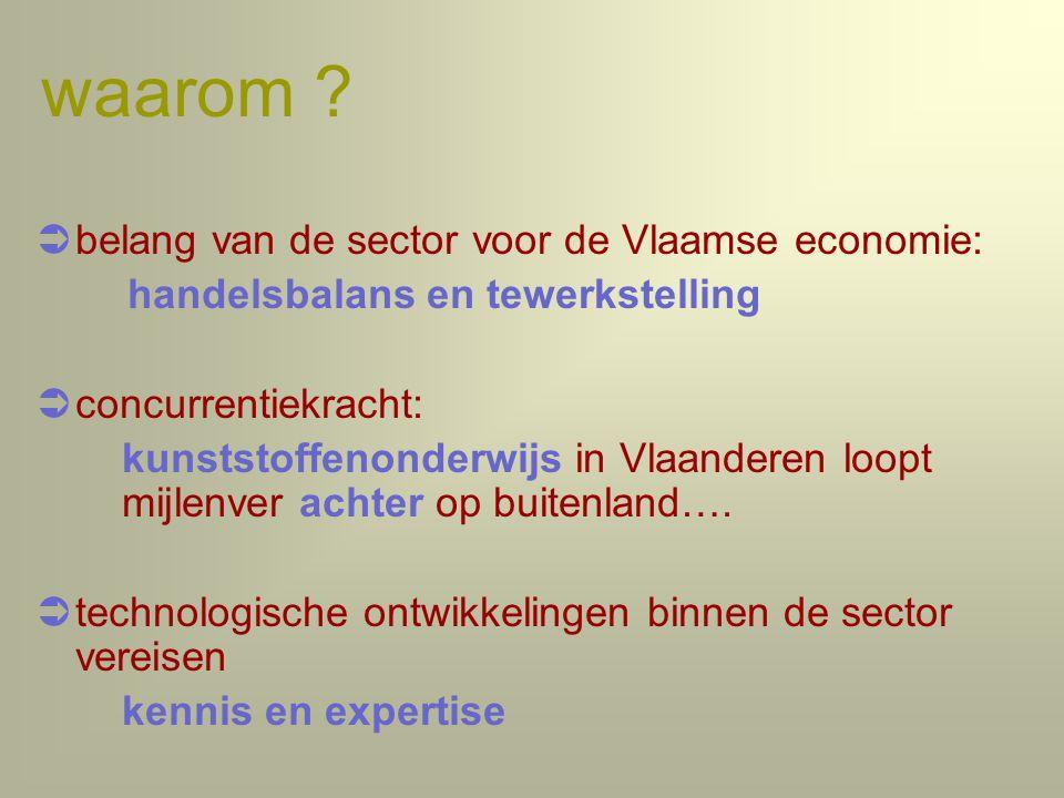 waarom belang van de sector voor de Vlaamse economie: