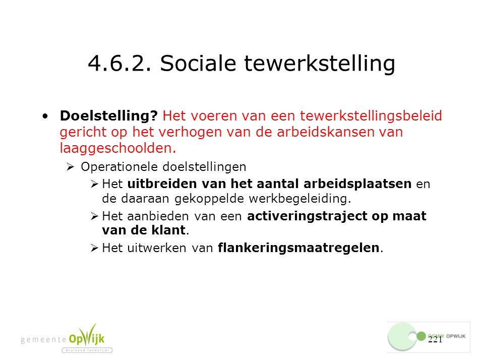 4.6.2. Sociale tewerkstelling