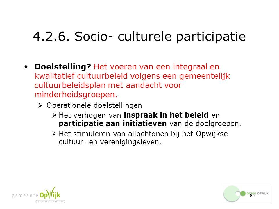 4.2.6. Socio- culturele participatie