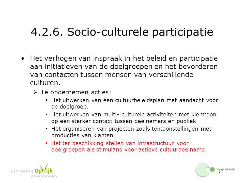 4.2.6. Socio-culturele participatie