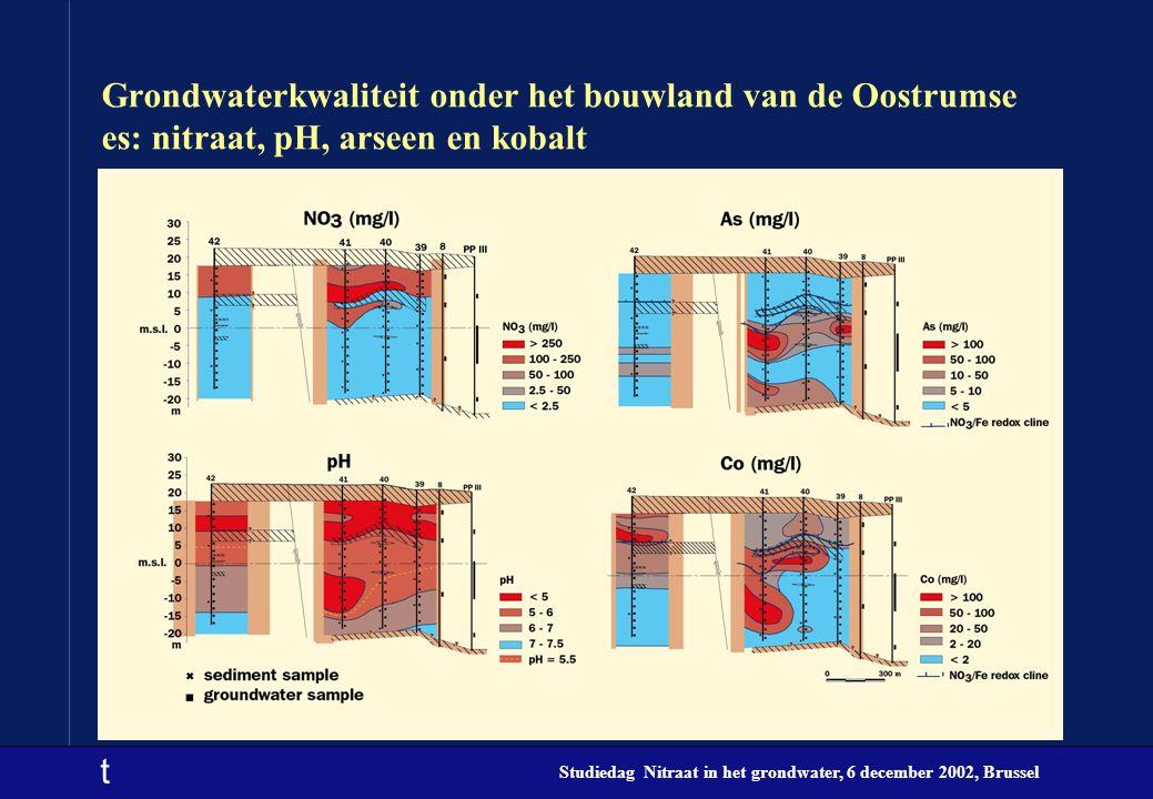 Grondwaterkwaliteit onder het bouwland van de Oostrumse es: nitraat, pH, arseen en kobalt