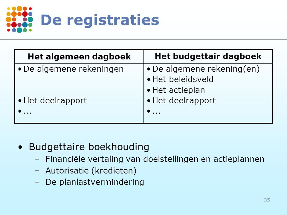 Het budgettair dagboek