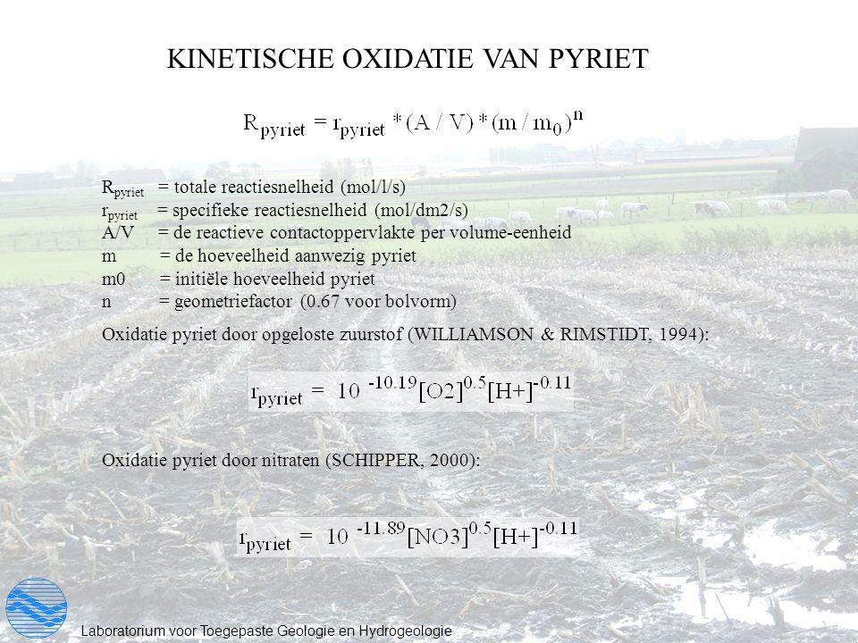 KINETISCHE OXIDATIE VAN PYRIET