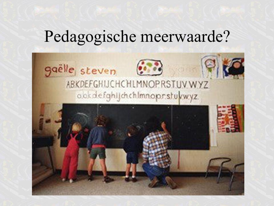 Pedagogische meerwaarde