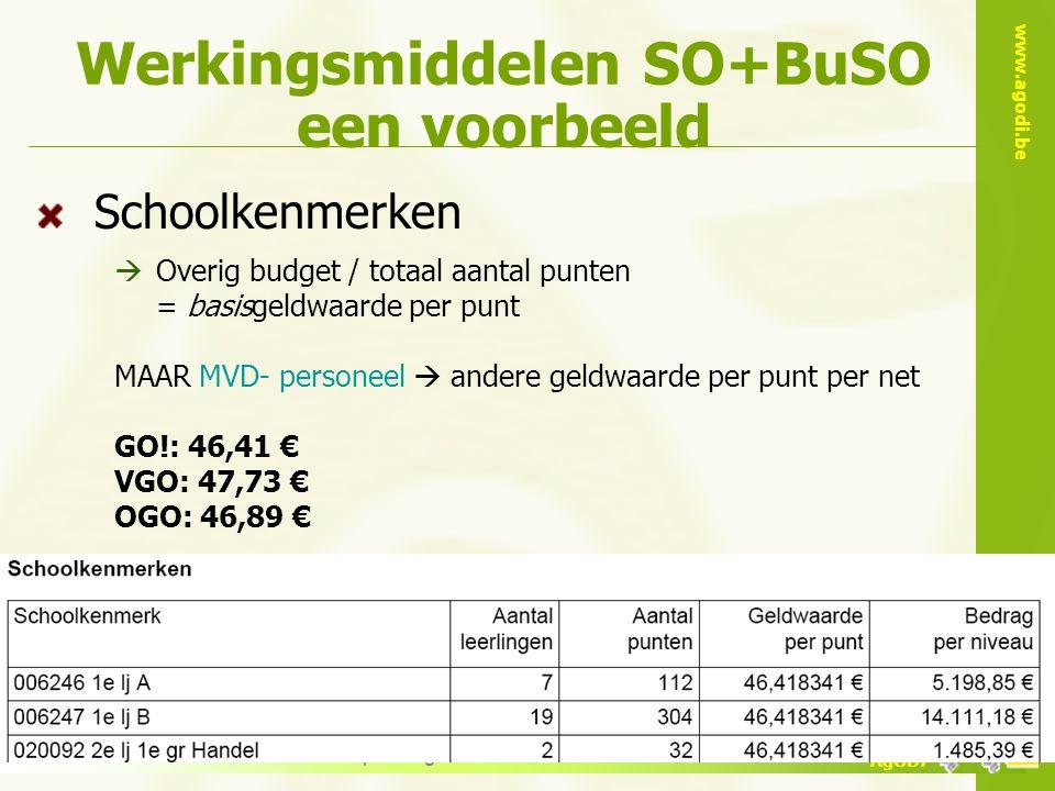 Werkingsmiddelen SO+BuSO een voorbeeld